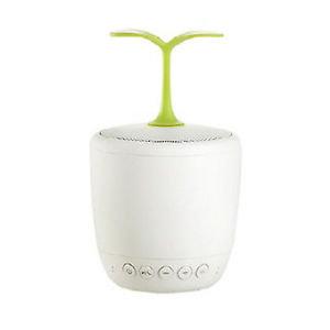 Smart Leaf Speaker
