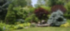 landscape rogers.jpg