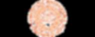 syracuse-university-seal_edited.png
