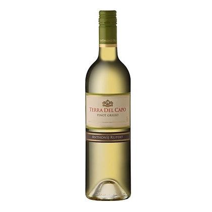Terra Del Capo Pinot Grigio (6-case)