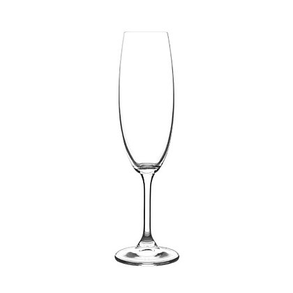 Champagne Flute Glasses 220ml (6-pack)
