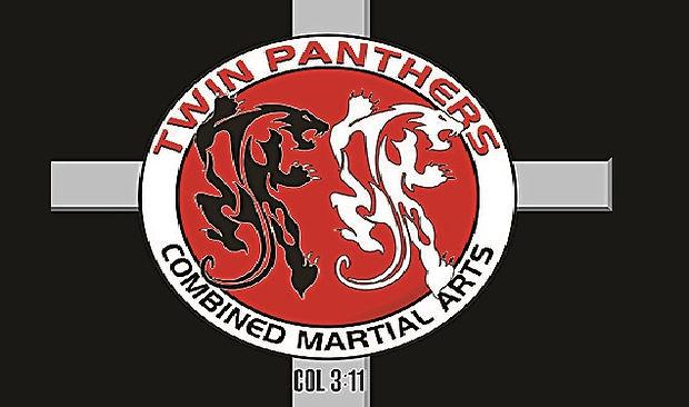 twinpanthers.jpg