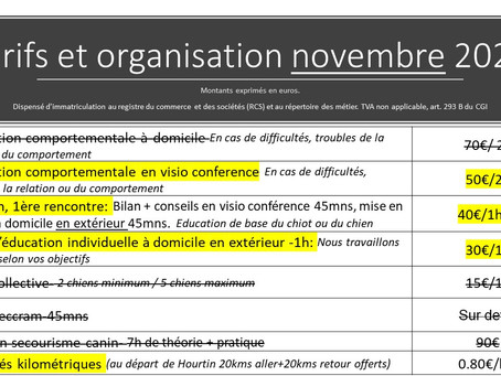 Organisation du mois de novembre: