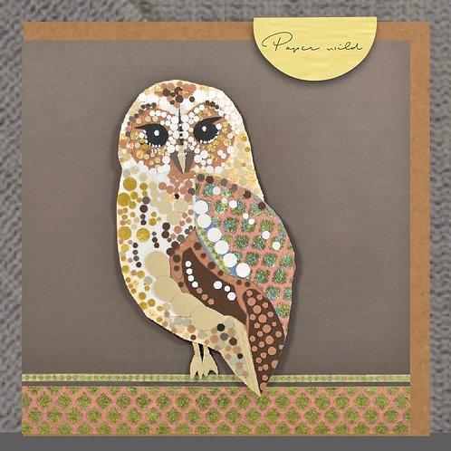 Tawny owl-WD09