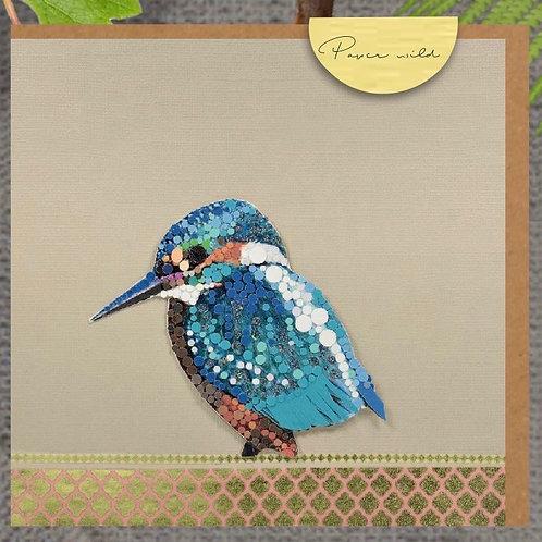 Kingfisher-WD06