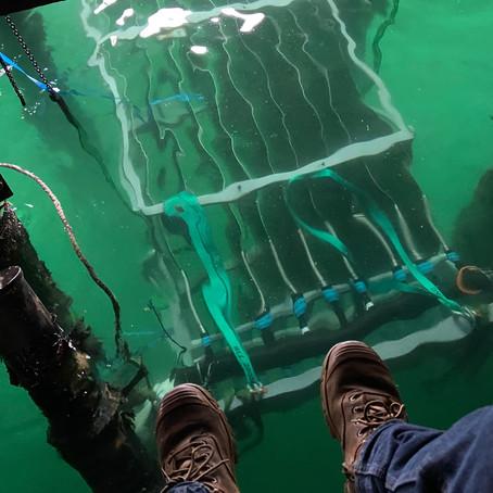 Walsh Bay Sea Water Heat Rejection Project