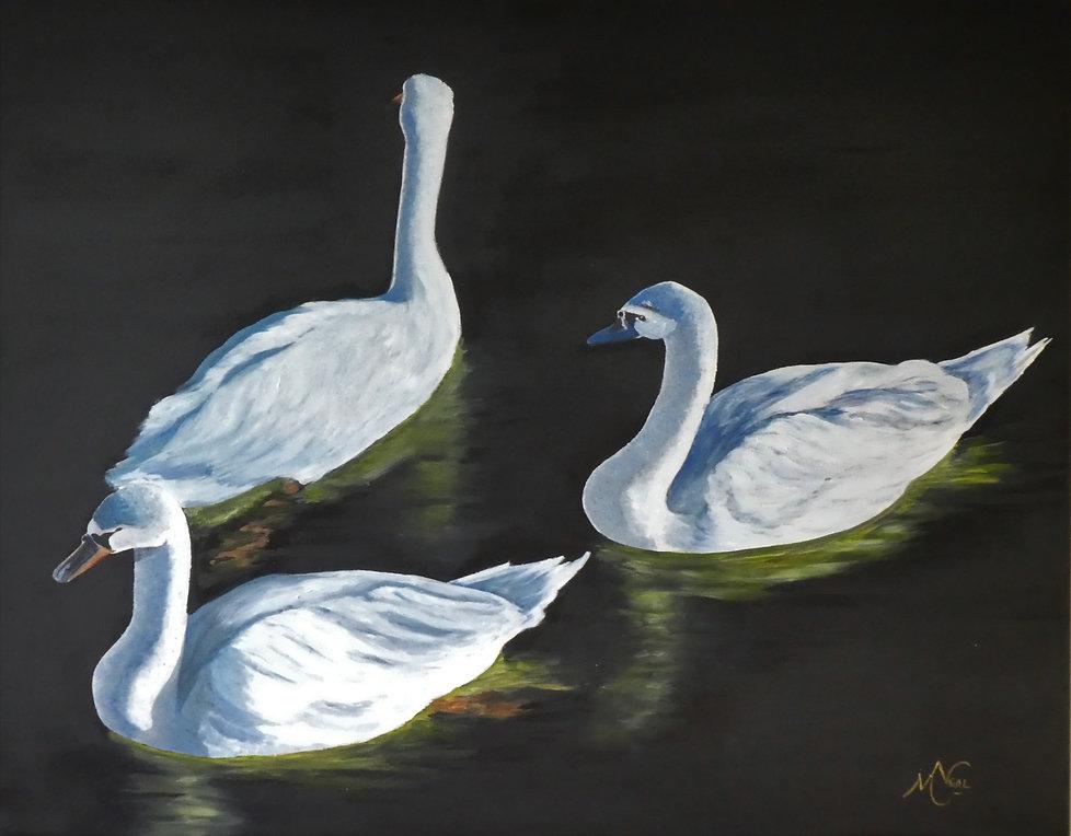 swans%25202_edited_edited.jpg