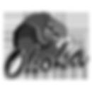 ohoka_rugby_logo.png