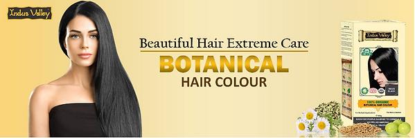 Botanical Hair Color Banner.PNG