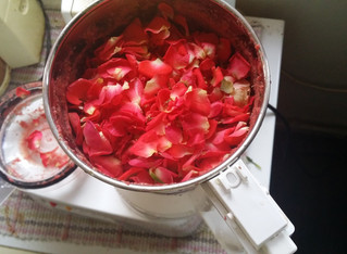 Indian Red Roses & Hair Fall