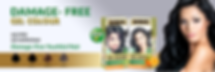 Banner for Organic Gel Hair Colors.PNG