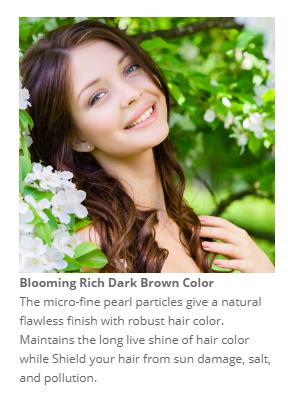 Dark Rich Brown Color.PNG