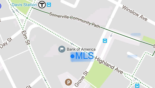 MLS Website (Map, www.mls.education).jpg