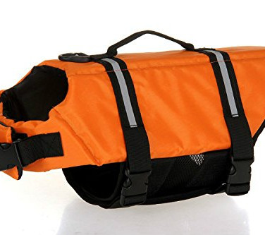 Dog LifeJacket