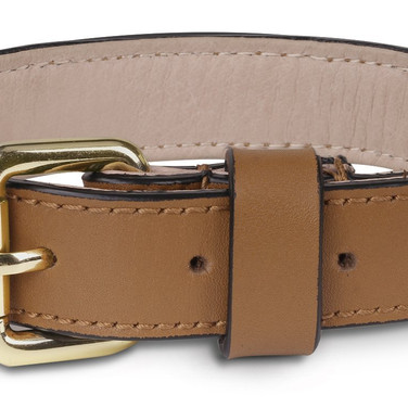 Pawaboo Leather Dog Collar