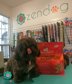 Benny says _stellaandchewys is incredibly yummy!__Now available at our Zendog shop in a variety of f
