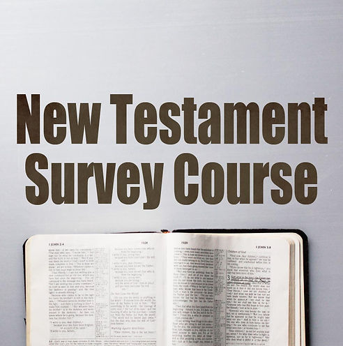 New Testament Survey Course.jpg