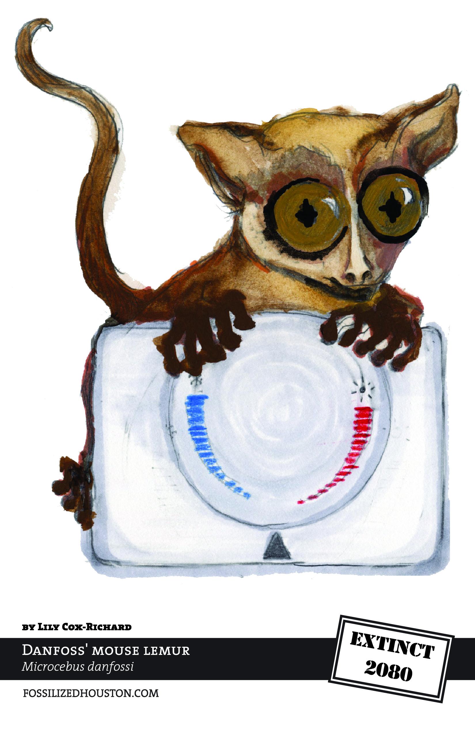 Danfoss' Mouse Lemur