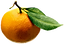 orange, fruit, ingredients, plant