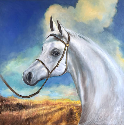 Arabian // Oil on Canvas 36x36""