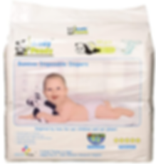 Diapers Andy Pandy.png