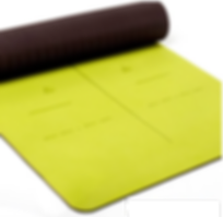 Sports Yoga Mat Healthyoga.png