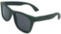 Sunglasses Green eco nisi.png