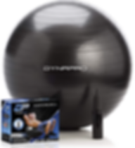 Exercise Ball Dynapro.png