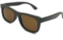 Sunglasses Brown eco nisi.png