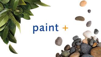 Paint-Plus-intro-2.jpg
