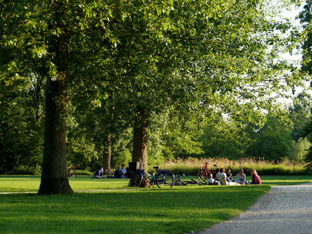 How Green is Amsterdam?