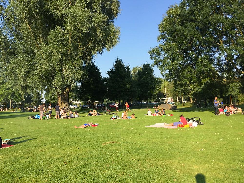 BBQ in an Amsterdam Park