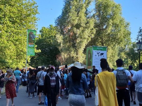 Keti Koti Festival Amsterdam - How Far Have the Surinamese Come?