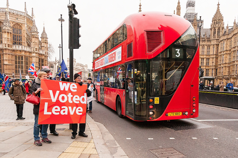 "Brexit ""Leave"" Voters"