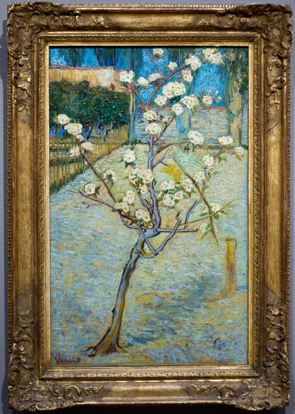 Small pear tree in blossom - Van Gogh Museum Amsterdam art collection