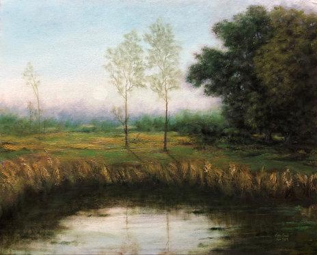 New Jersey Meadow