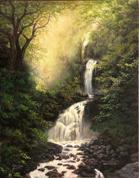 Falls in the Forest
