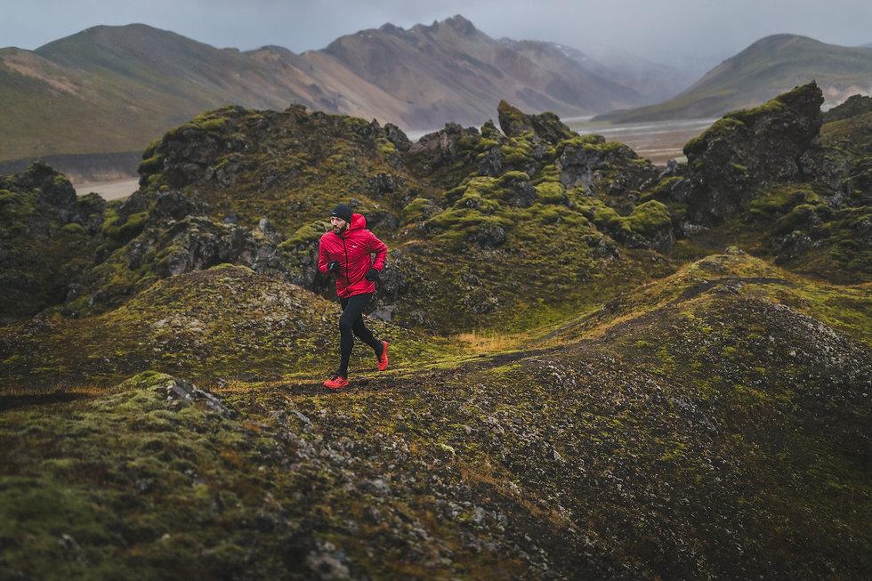 S20_Iceland_Peregrine_64.jpg