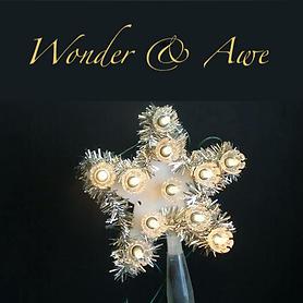 Wonder and Awe.png