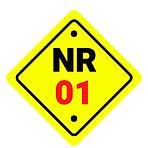 Vilella Assessoria NR - 01 Ordem de Serv