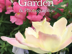 Granny's Garden is available in paperback. amazon.com/author/jean_ann_shirey