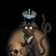 Cat Sidhe, King of Cats