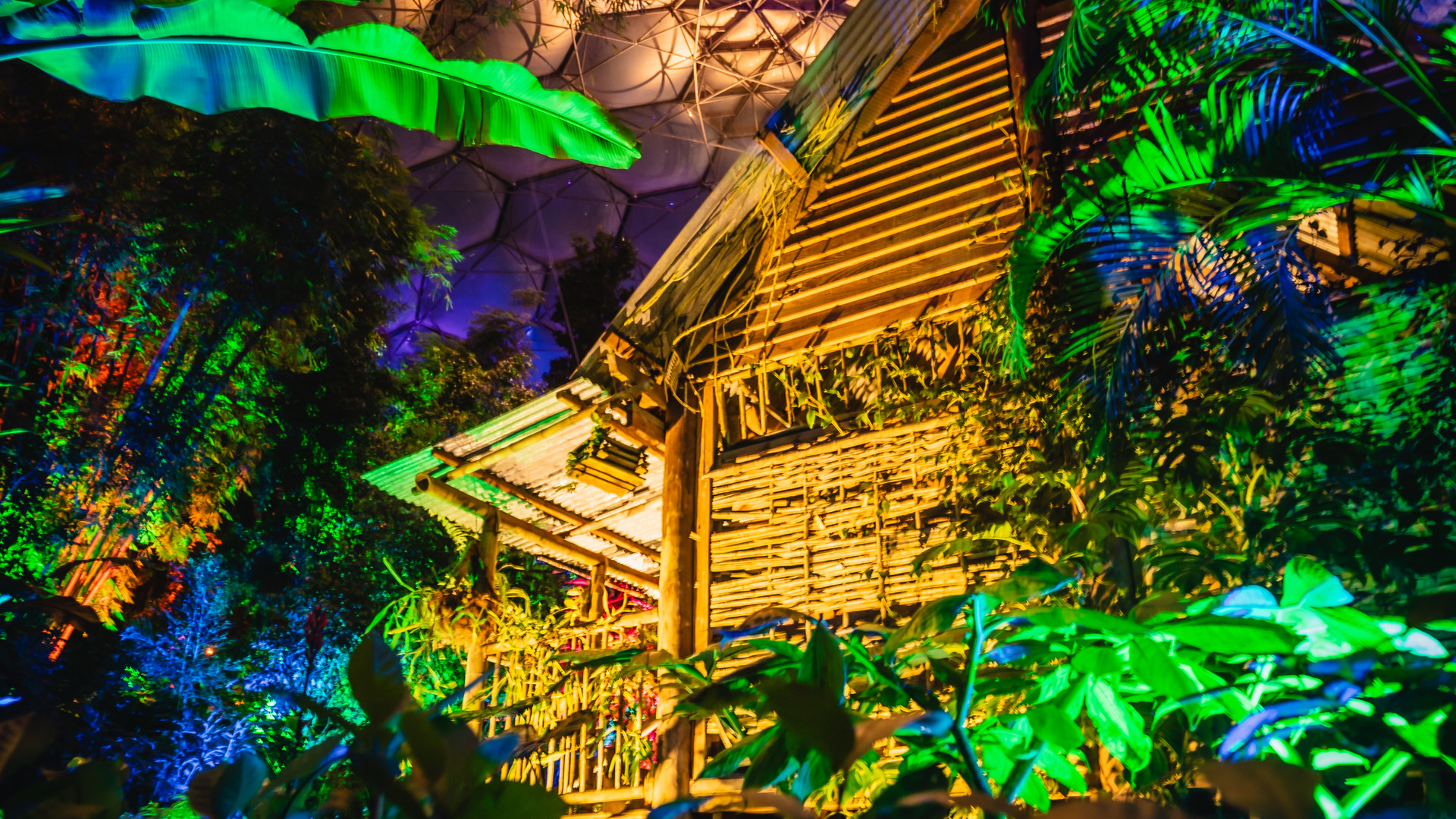 Christmas at Eden 2020 - Tropical Biome