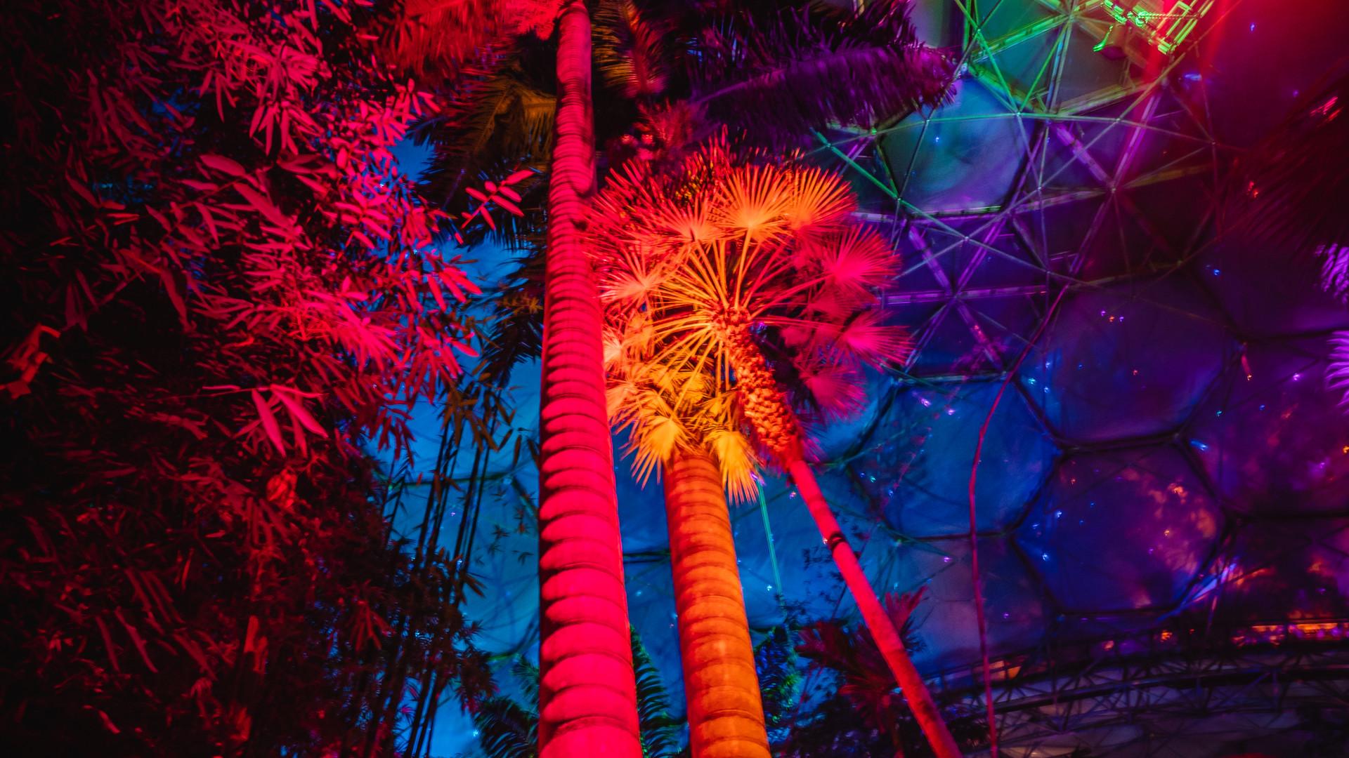 Eden Tropical Biome