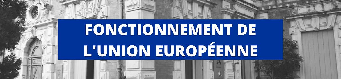 LA MAISON DE L'EUROPE-10.png