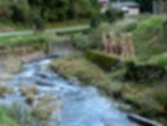 川で遊ぶ2.jpg