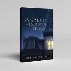 Snapshots in Enclosed Spaces Book Cover Design