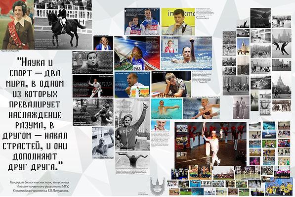 Спорт в МГУ