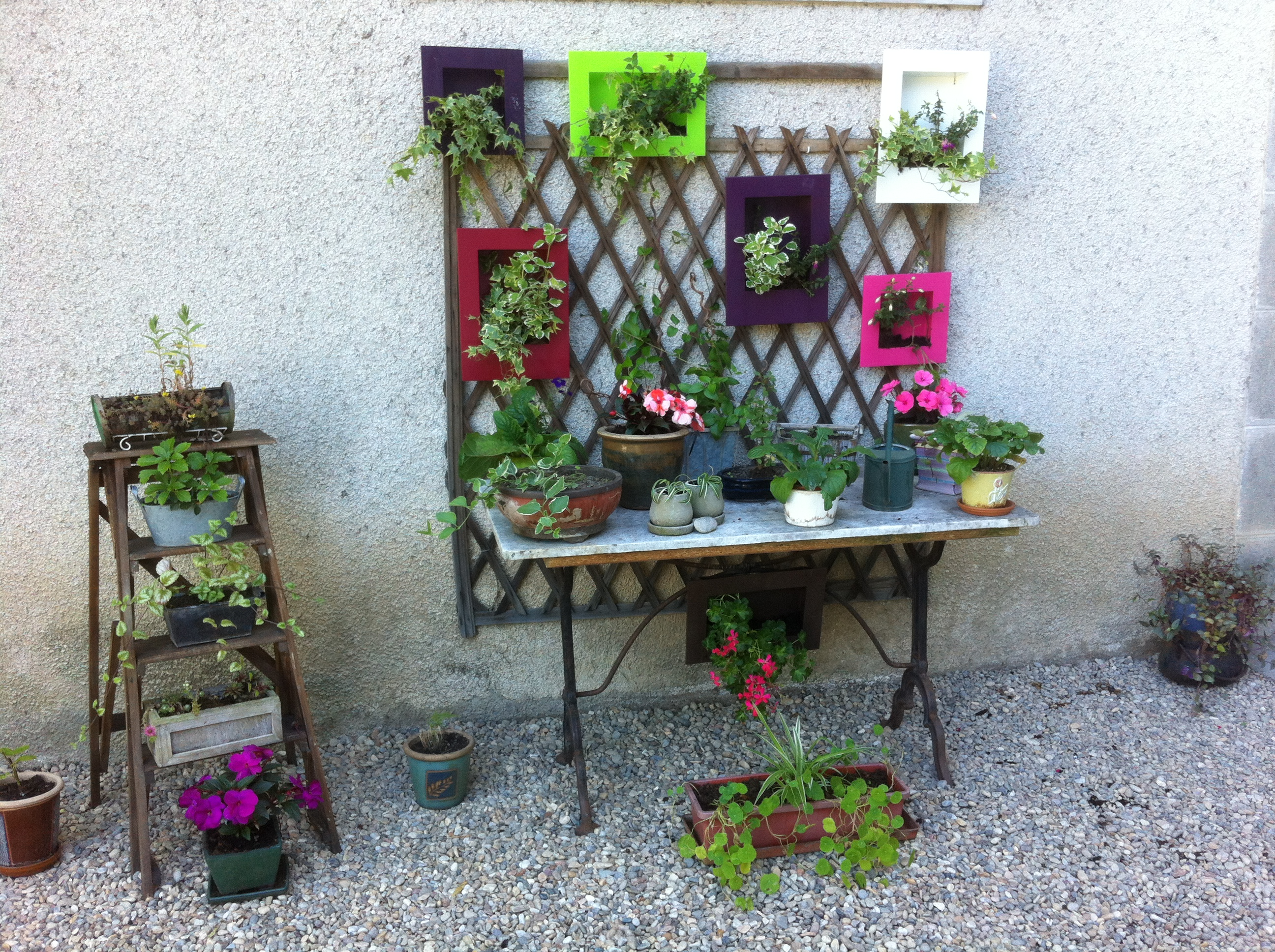Quelques plantes vertes et fleuries
