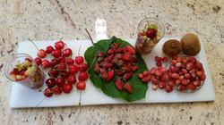 Les premiers fruits rouges du jardin